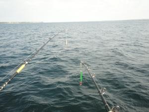 Fiskespön